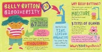 Belly Button Biodiversity